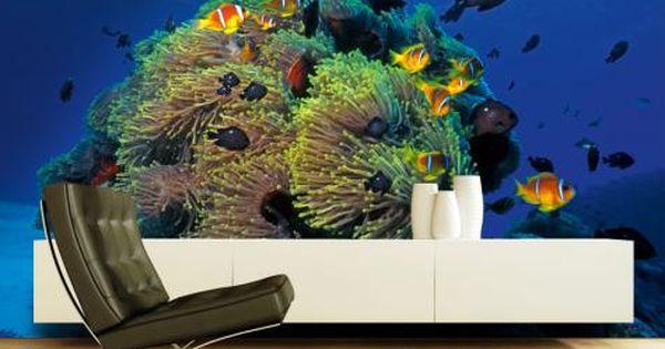 Maak van uw woonkamer slaapkamer gang kantoor of etalage een aquarium met koraal en vissen - Maak een gang ...