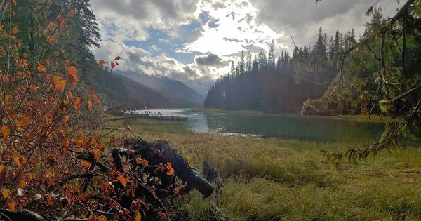 Just North Of Pemberton In British Columbia Canada B C Never Disappoints Https Www Reddit Com R Campin Hiking In Virginia Camping Images Missouri Camping