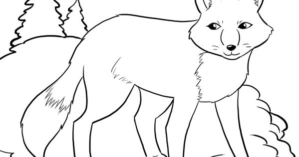 FREE Artic Fox Coloring Page for Kids. winter coloring