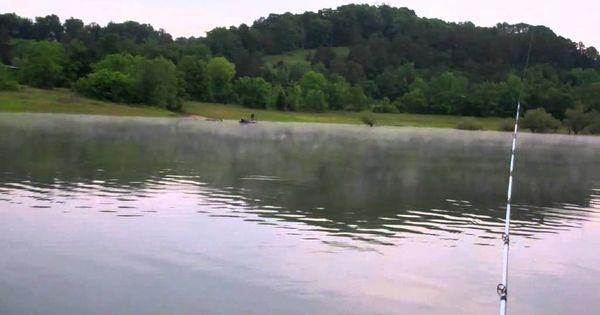 Fishing douglas lake fishing videos pictures jokes for Douglas lake fishing