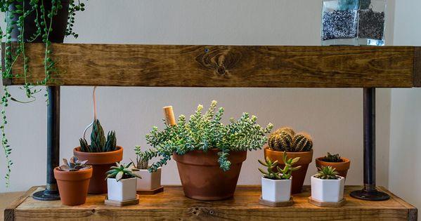 9 Creative Plant Shelves Hanging Displays Grow Lights For Plants Indoor Plant Shelves Plant Shelves
