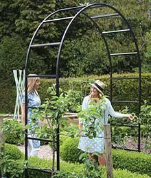 Rosenbogen Rosenbogen Gartenstruktur Garten