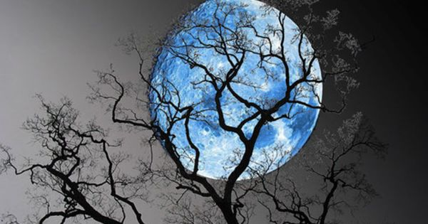 Bluemoon 2012
