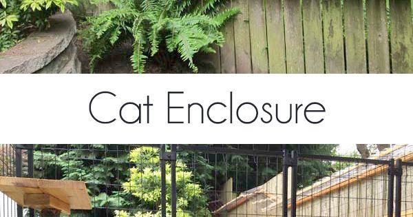 awesome large diy backyard cat enclosure katzen kratzb ume und katzen spiele. Black Bedroom Furniture Sets. Home Design Ideas