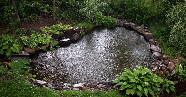 wonderful garden pond landscaping pictures | #GardenPond #WaterFeatures / Heart shaped garden pond with ...