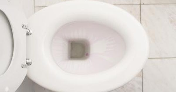How Do I Remove Scratches From A Toilet Bowl Toilet Bowl Stains Clean Toilet Bowl Toilet Stains
