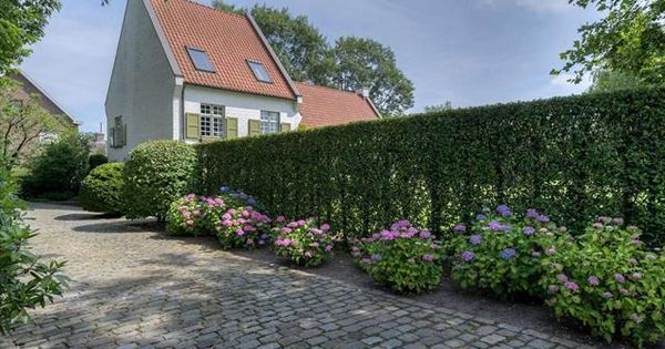 Oprit hortensia tuin pinterest - Eigentijdse tuinfoto ...