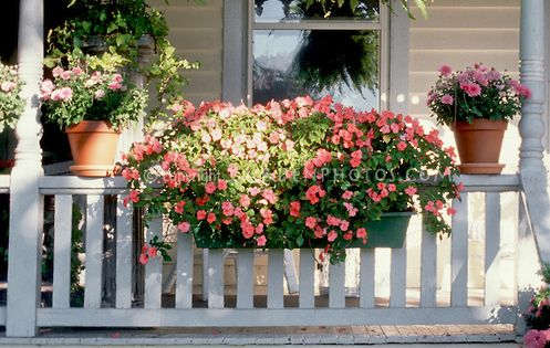 Curb appeal container garden on victorian style house for Front porch hanging plants