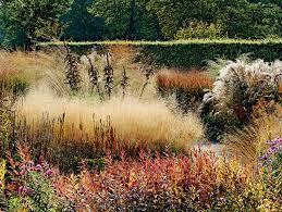 Image Result For Piet Olaf Garden Design Landscape Design Dutch Gardens Urban Garden