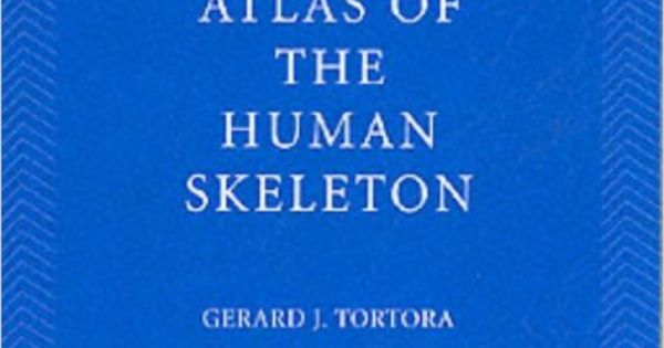 buy principles of anatomy & physiology 9e atlas of the human, Skeleton