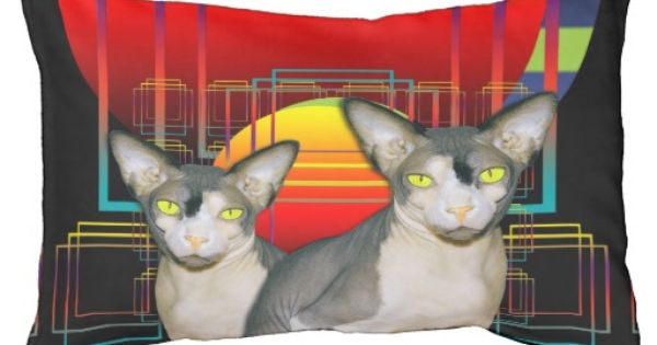 Sphynx cat cat design and sphynx on pinterest