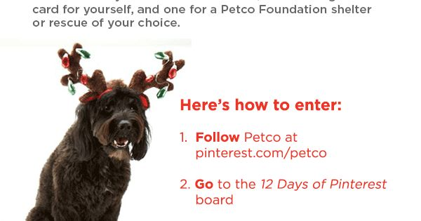 "Spread holiday cheer this year with Petco's ""12 Days of Pinterest"" repin"