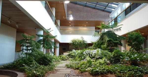 indoor garden Google Indoor garden Pinterest Gardens
