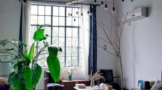 Oosterse Slaapkamer Ideeen : Grote karakteristieke planten zijn erg ...