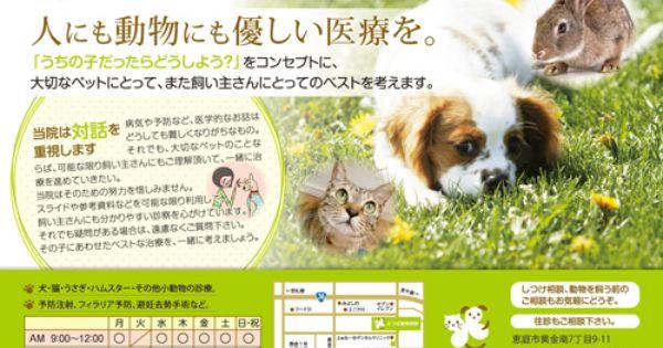 北海道恵庭市 よつば動物病院 様リーフレットちらし制作 チラシ リーフレット 病院