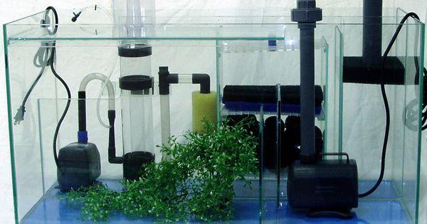 Aquarium filters acuario marino pinterest acuario peceras y decoracion de peceras - Decoracion acuario marino ...
