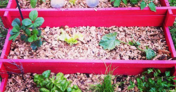 Potager en carr mod le en escalier chez truffaut jardin pinterest diy and crafts - Carre potager truffaut ...