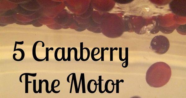 cranberry fine motor games fine motor fridays