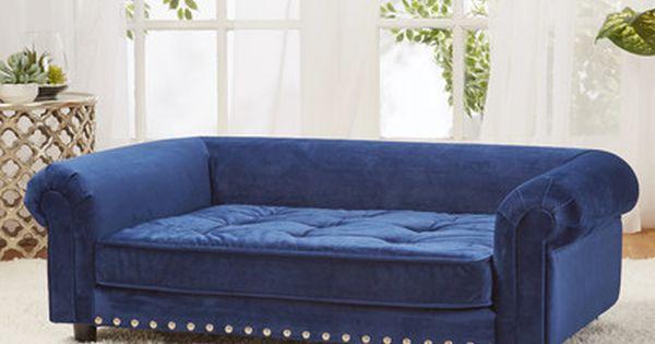 Found It At Wayfair Manchester Velvet Tufted Dog Sofa With Cushion Dog Sofa Bed Dog Bed Dog Sofa