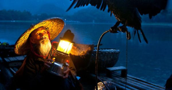 cormorant fisherman | interesting people | Pinterest ...