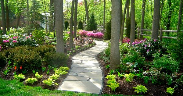 Pin by bridget dopp on woodland plants pinterest shade for Woodland garden designs
