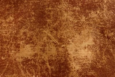 Sensational How To Fix Dog Scratches On Leather Furniture That Are Just Evergreenethics Interior Chair Design Evergreenethicsorg