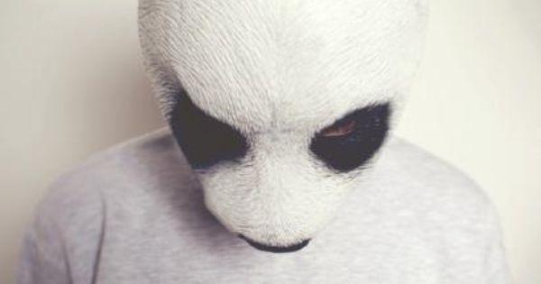 Panda animal mask.
