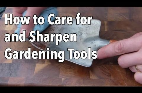 How To Care For And Sharpen Gardening Tools Video Old Farmer 39 S Almanac Gardening Flowers