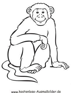 Ausmalbild Schimpanse Ausdrucken Ausmalen Ausmalbilder Tiere Zum Ausmalen