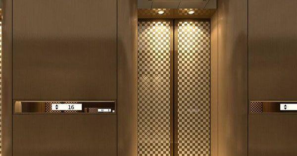 Foyer Chandelier Lift : 电梯厅的搜索结果 百度图片搜索 lift and lobby pinterest