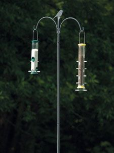 I Have This Advanced Pole System For My Birdfeeders And It Works Great I Ve Had Mine 4 Years And It Wild Birds Unlimited Bird Feeder Hangers Bird Feeder Poles