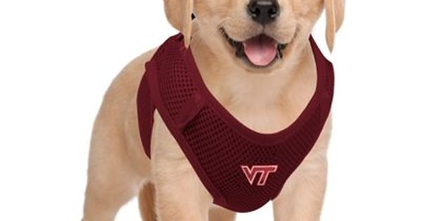 Virginia Tech Hokies Pet Vest Harness Maroon Nfl Fan Gear Pet