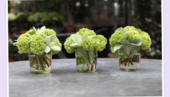 small simple green hydrangea centerpieces