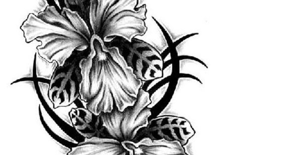 black and white orchid tattoo designs - Google Search ...