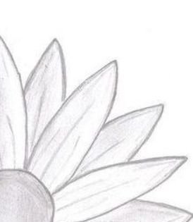 Things To Draw For Teenagers Google Search Easy Drawings Sketches Easy Doodles Drawings Easy Flower Drawings