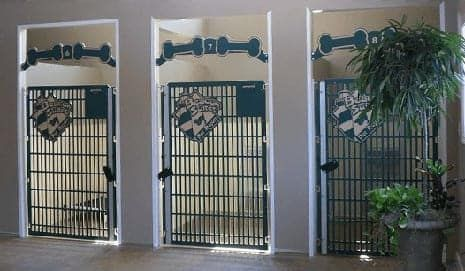 Dog Kennel Gates With Unique Desings Made By Gator Kennels Dog