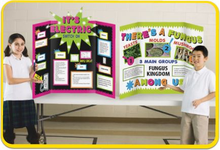 Poster board ideas for science fair