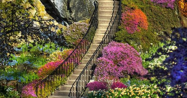 (Butchart Gardens, Victoria, BC) victoria canada flowers stairs pink green purple orange