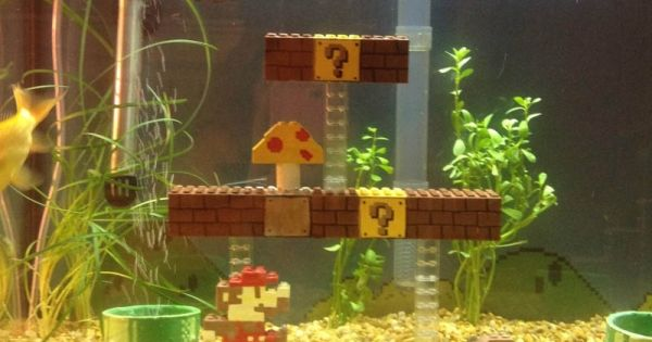 That super mario fish tank decorations consider, that
