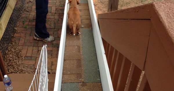Home Made Dog Ramp For Dachshunds Or Other Small Dogs To