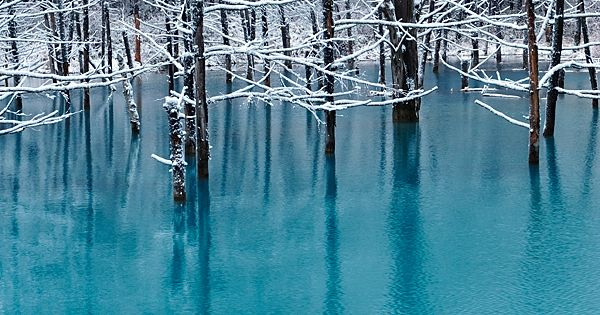 Blue Pond in November by Kent Shiraishi, via 500px. Biei, Hokkaido, Japan.
