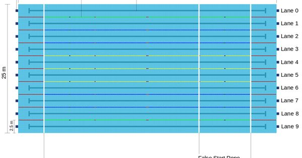 Regulation Olympic Size Swimming Pool Just Keep Swimming