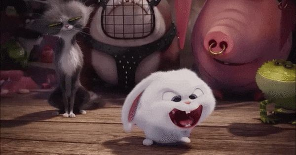 Snowball From The Secret Life Of Pets 3 Pets Movie Secret Life Of Pets Cute Bunny Cartoon