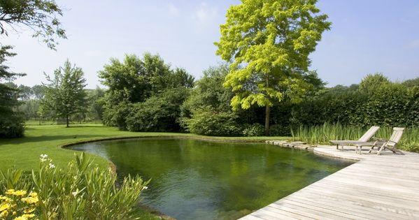 Zwemvijver in tuin losse vorm de mooiste zwembaden for Kostprijs zwemvijver aanleggen