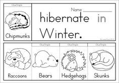 Winter Animals Hibernation Coloring Pages Winter Sight Words
