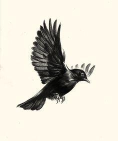 Tattoo Neck Bird Blackbird 23 Ideas Flying Bird Tattoo Black Bird Tattoo Birds Tattoo