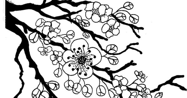 cherry tree blossom coloring page quilts applique inspirations pinterest cherry tree