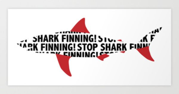shark finning speech But benchley, the man who reinvented the great white shark as the nemesis of   a result of a huge global market for shark fin soup — a popular chinese.