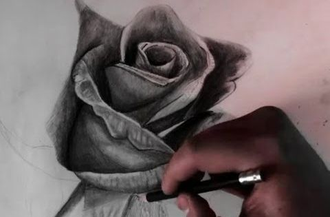 Drawing A Rose With Pencil Realistic How To art
