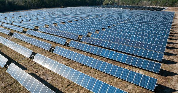 Botswana Power Corporation Cancels Its Jv 100mw Solar Pv Tender Solar Energy Diy Solar Panels Solar